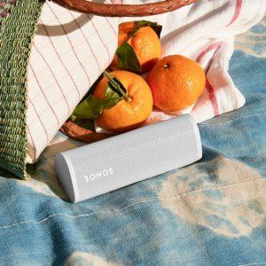 roam-lifestyle-outdoor-picnic